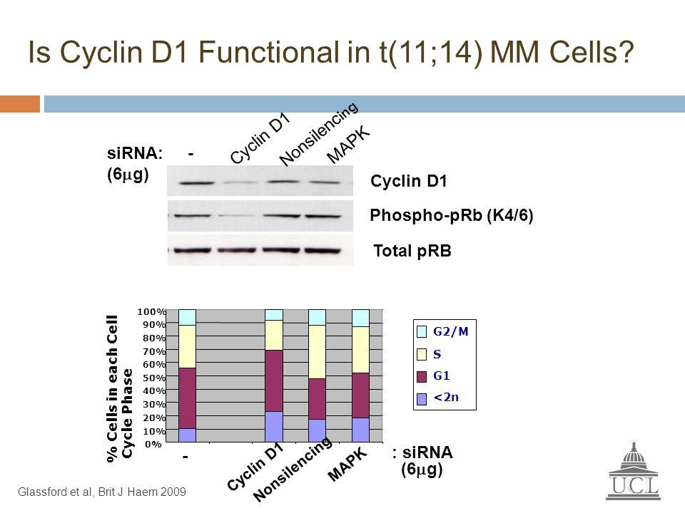 Cyclin D1 siRNA: - (6  g) Cyclin D1 Nonsilenc ing MAPK Phospho-pRb (K4/6) 0% 10% 20% 30% 40% 50% 60% 70% 80% 90% 100% % Cells in each Cell Cycle Phas