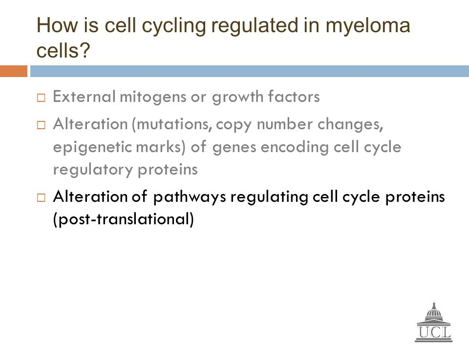 How is cell cycling regulated in myeloma cells?  External mitogens or growth factors  Alteration (mutations, copy number changes, epigenetic marks)