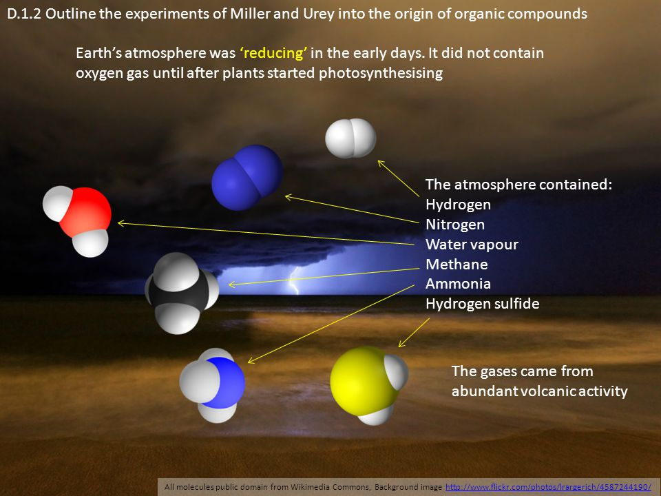 D.1.2 Outline the experiments of Miller and Urey into the origin of organic compounds Earth's atmosphere was 'reducing' in the early days. It did not