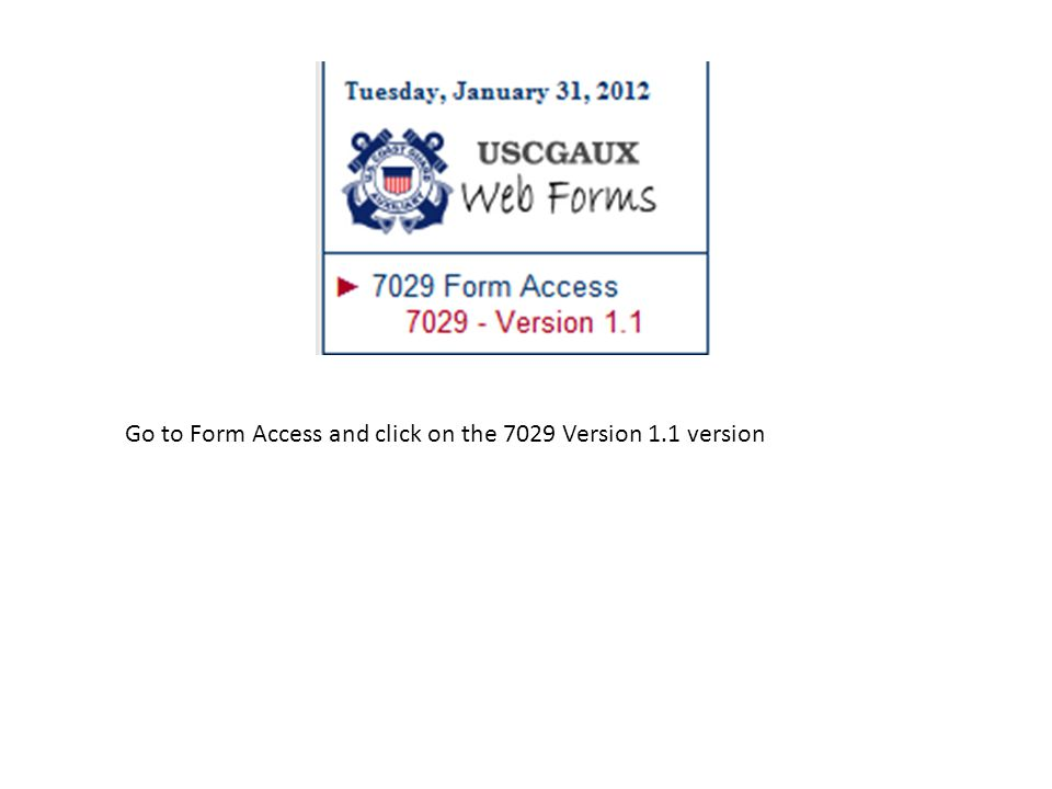 Go to Form Access and click on the 7029 Version 1.1 version