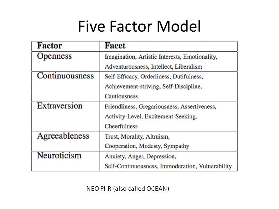 Five Factor Model NEO PI-R (also called OCEAN)