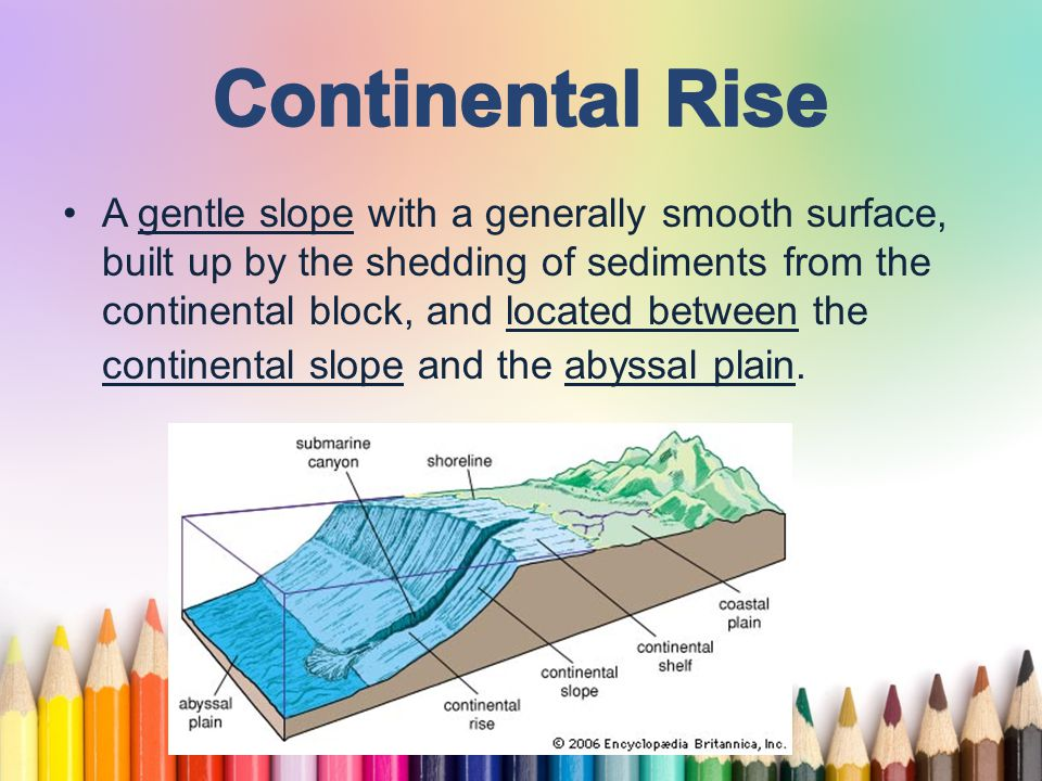 www.free-ppt-templates.com The oceanic trenches are hemispheric- scale (one hemisphere to another) long but narrow topographic depressions of the sea floor.