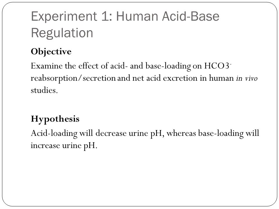 Experiment 1: Human Acid-Base Regulation Objective Examine the effect of acid- and base-loading on HCO3 - reabsorption/secretion and net acid excretion in human in vivo studies.