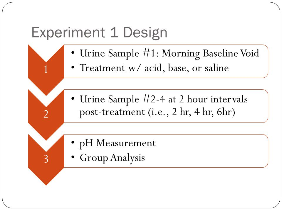 Experiment 1 Design 1 Urine Sample #1: Morning Baseline Void Treatment w/ acid, base, or saline 2 Urine Sample #2-4 at 2 hour intervals post-treatment (i.e., 2 hr, 4 hr, 6hr) 3 pH Measurement Group Analysis