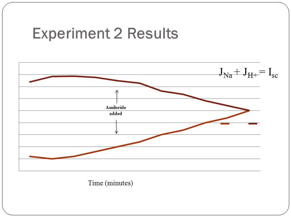 Experiment 2 Results Time (minutes) Amiloride added J Na + J H+ = I sc