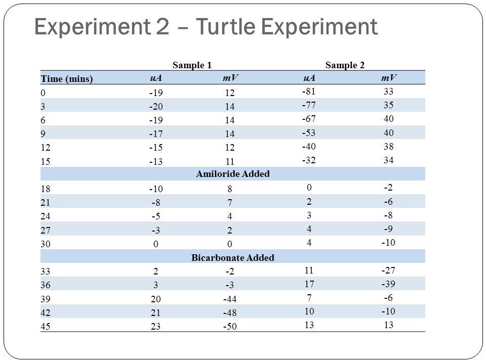 Experiment 2 – Turtle Experiment Sample 1Sample 2 Time (mins) uAmVuAmV 0-1912 -8133 3-2014 -7735 6-1914 -6740 9-1714 -5340 12-1512 -4038 15-1311 -3234 Amiloride Added 18-108 0-2 21-87 2-6 24-54 3-8 27-32 4-9 3000 4-10 Bicarbonate Added 332-2 11-27 363-3 17-39 3920-44 7-6 4221-48 10-10 4523-50 13