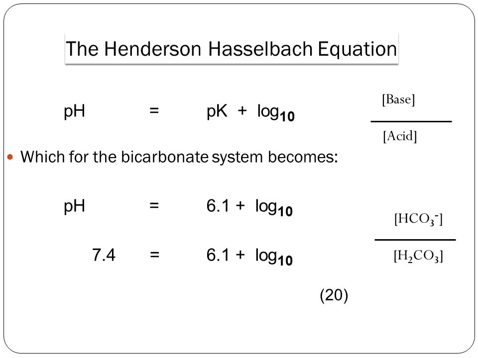 pH= pK + log 10 Which for the bicarbonate system becomes: pH= 6.1 + log 10 7.4 = 6.1 + log 10 [Base] [Acid] [HCO 3 - ] [H 2 CO 3 ] The Henderson Hasselbach Equation (20)