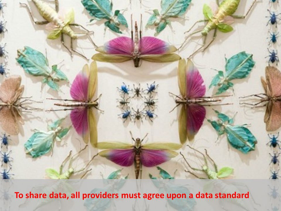 To share data, all providers must agree upon a data standard