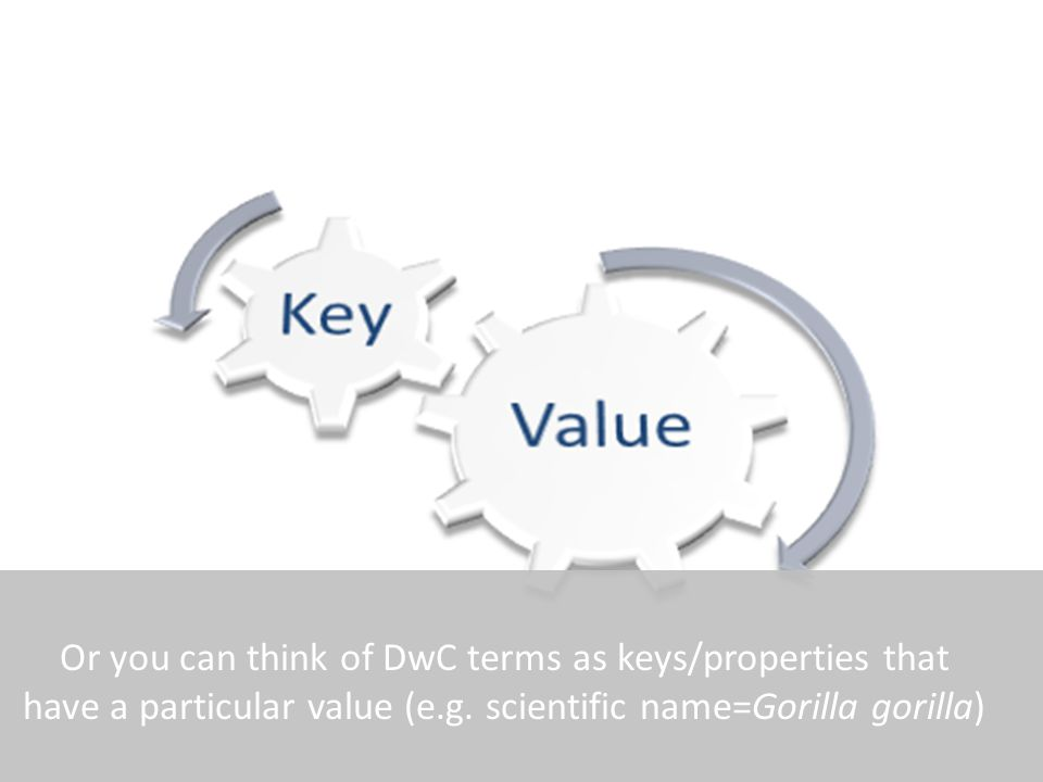 Or you can think of DwC terms as keys/properties that have a particular value (e.g.