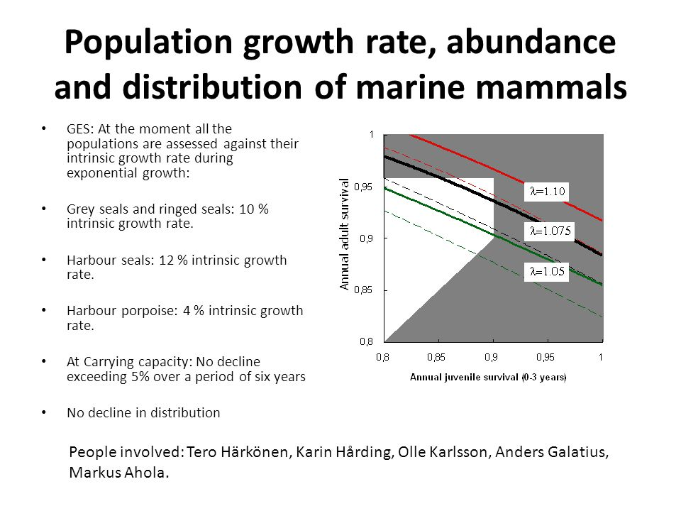Population growth rate, abundance and distribution of marine mammals GES: At the moment all the populations are assessed against their intrinsic growth rate during exponential growth: Grey seals and ringed seals: 10 % intrinsic growth rate.