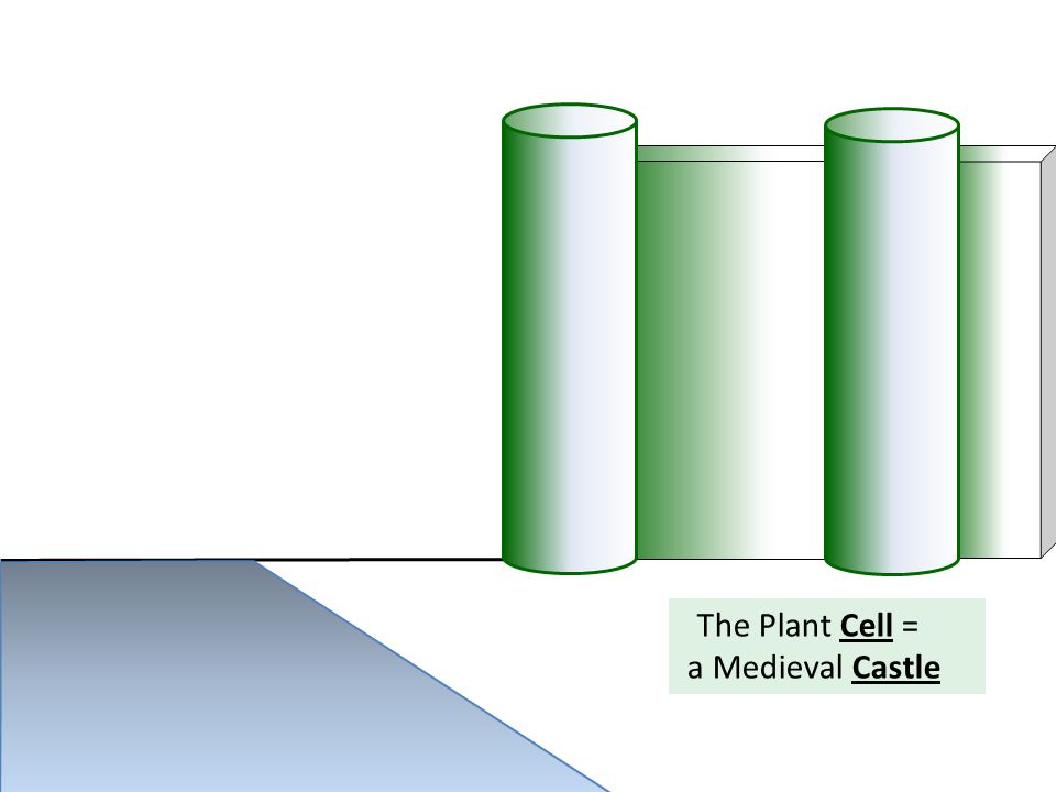 The Plant Cell = a Medieval Castle