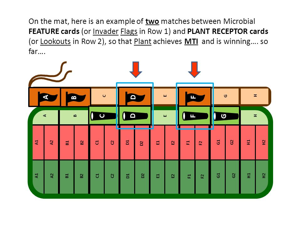 On the mat, here is an example of two matches between Microbial FEATURE cards (or Invader Flags in Row 1) and PLANT RECEPTOR cards (or Lookouts in Row