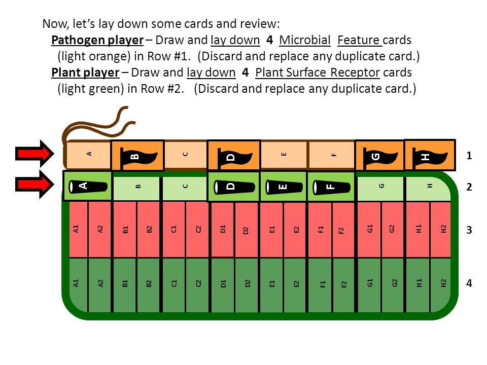 Now, let's lay down some cards and review: Pathogen player – Draw and lay down 4 Microbial Feature cards (light orange) in Row #1. (Discard and replac