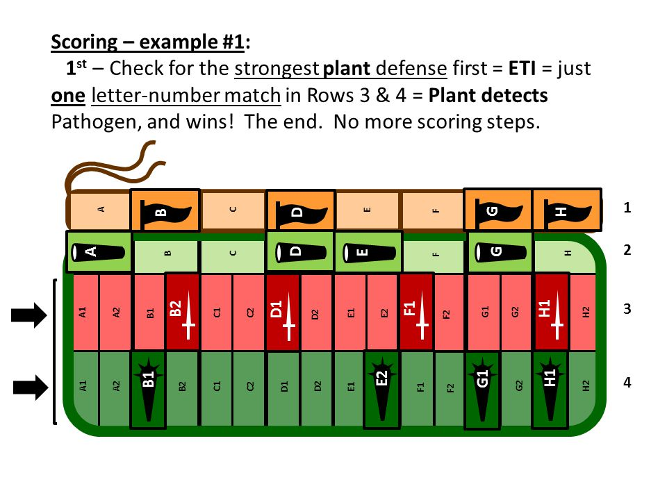 Scoring – example #1: 1 st – Check for the strongest plant defense first = ETI = just one letter-number match in Rows 3 & 4 = Plant detects Pathogen,