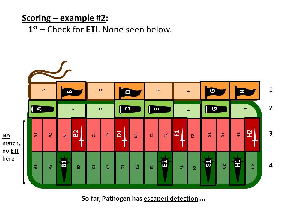 Scoring – example #2: 1 st – Check for ETI. None seen below. 1 2 3 4 D B G H B2 D1 F1H2 D A G F E H1E2G1 B1 No match, no ETI here So far, Pathogen has