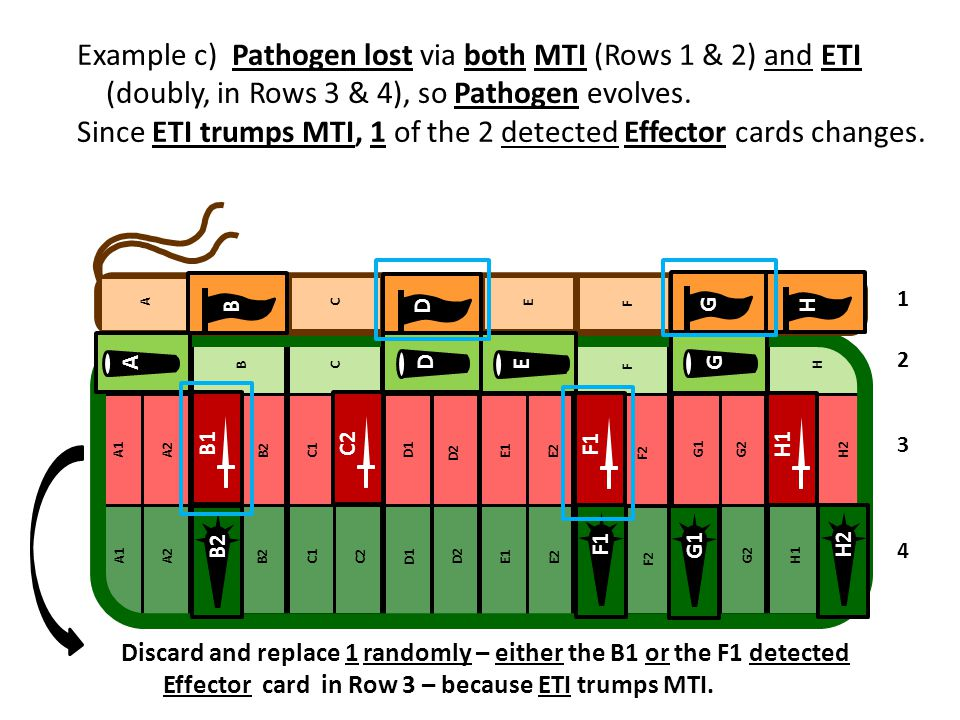 Example c) Pathogen lost via both MTI (Rows 1 & 2) and ETI (doubly, in Rows 3 & 4), so Pathogen evolves. Since ETI trumps MTI, 1 of the 2 detected Eff