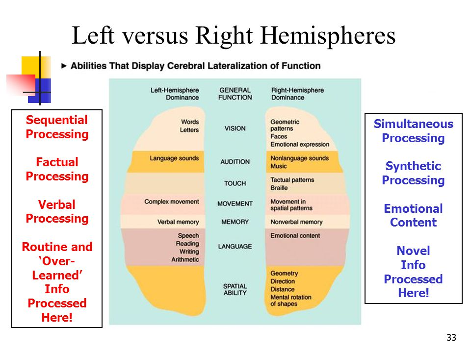 32 DA' BRAIN: Its two hemispheres and four lobes