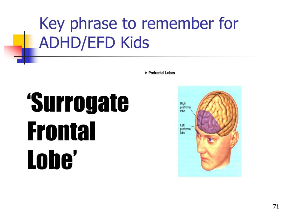 70 Recommendations for Students with Attention/Executive Functioning Needs