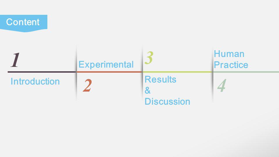 LOGO Experimental: Results & Discussion: Results Chap.1 Chap.2 Chap.3 Chap.4 DU-145 IκBα GAPDH shRNA- IκBα - +