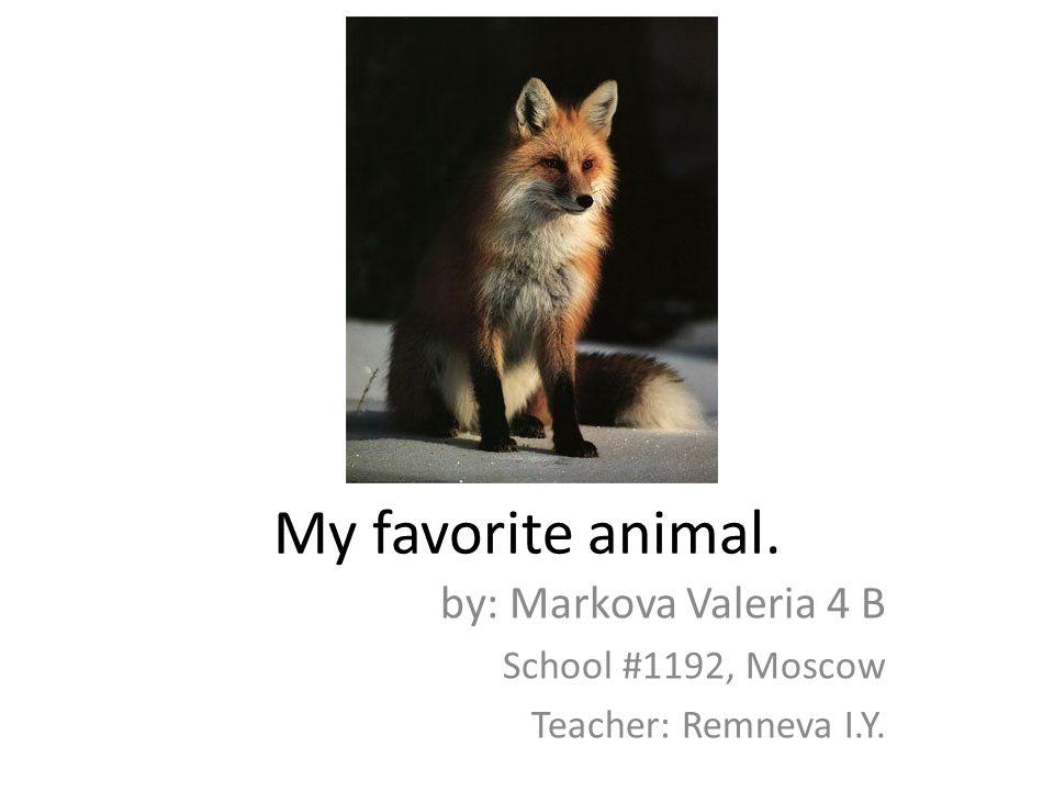 My favorite animal. by: Markova Valeria 4 B School #1192, Moscow Teacher: Remneva I.Y.