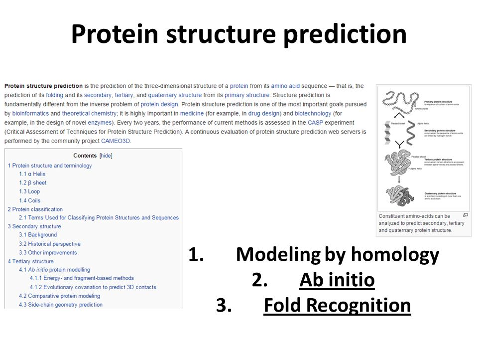 Protein structure prediction 1.Modeling by homology 2.Ab initio 3.Fold Recognition
