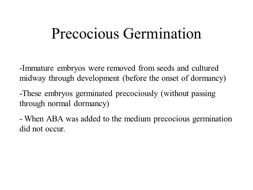 Precocious Germination -Immature embryos were removed from seeds and cultured midway through development (before the onset of dormancy) -These embryos