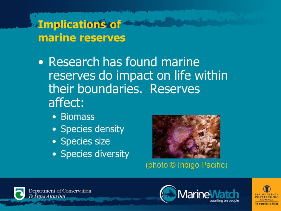 Implications of marine reserves Research has found marine reserves do impact on life within their boundaries.