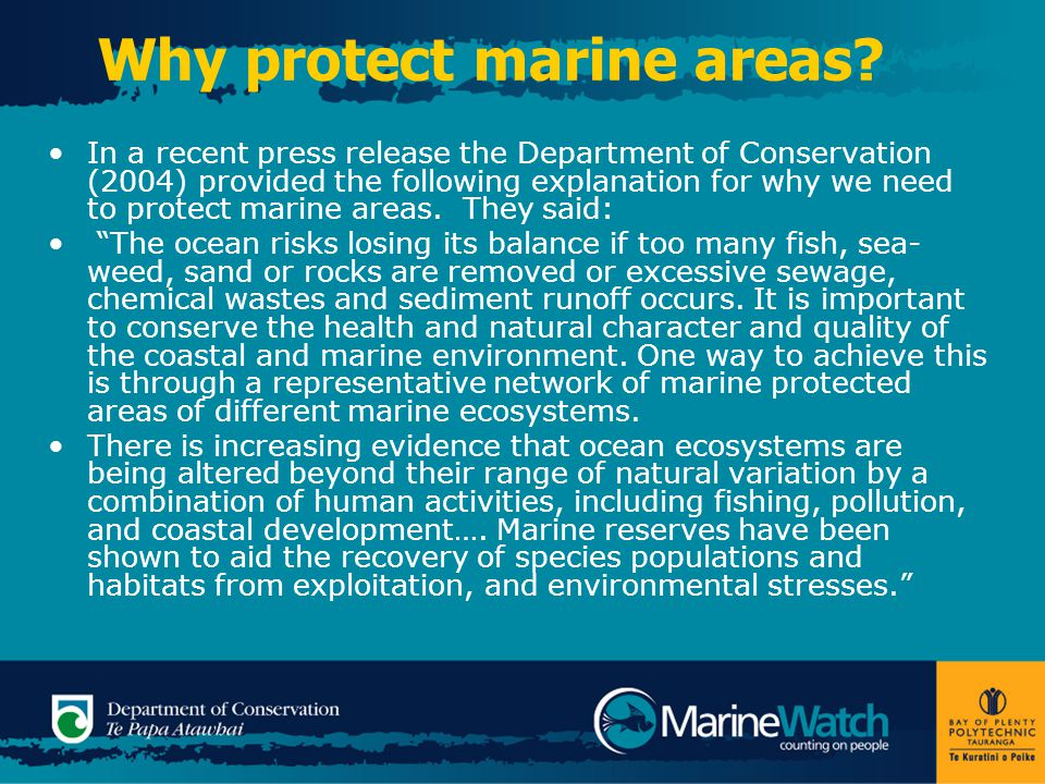 Why protect marine areas.