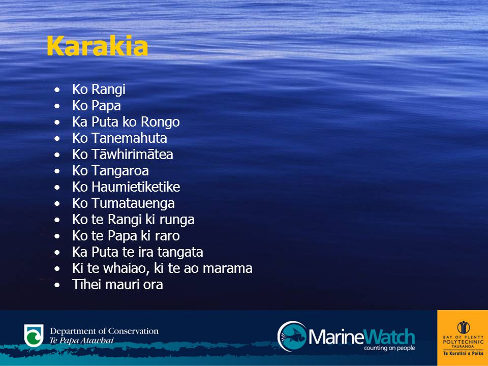 Where New Zealand's marine reserves located.