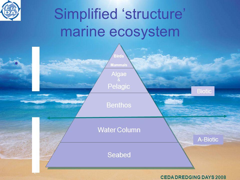 Simplified 'structure' marine ecosystem CEDA DREDGING DAYS 2008 Birds Mammals Birds Mammals Algae & Pelagic Algae & Pelagic Benthos Water Column Seabed BIOTOPESBIOTOPES PHYSSUBSTRATEPHYSSUBSTRATE Biotic A-Biotic