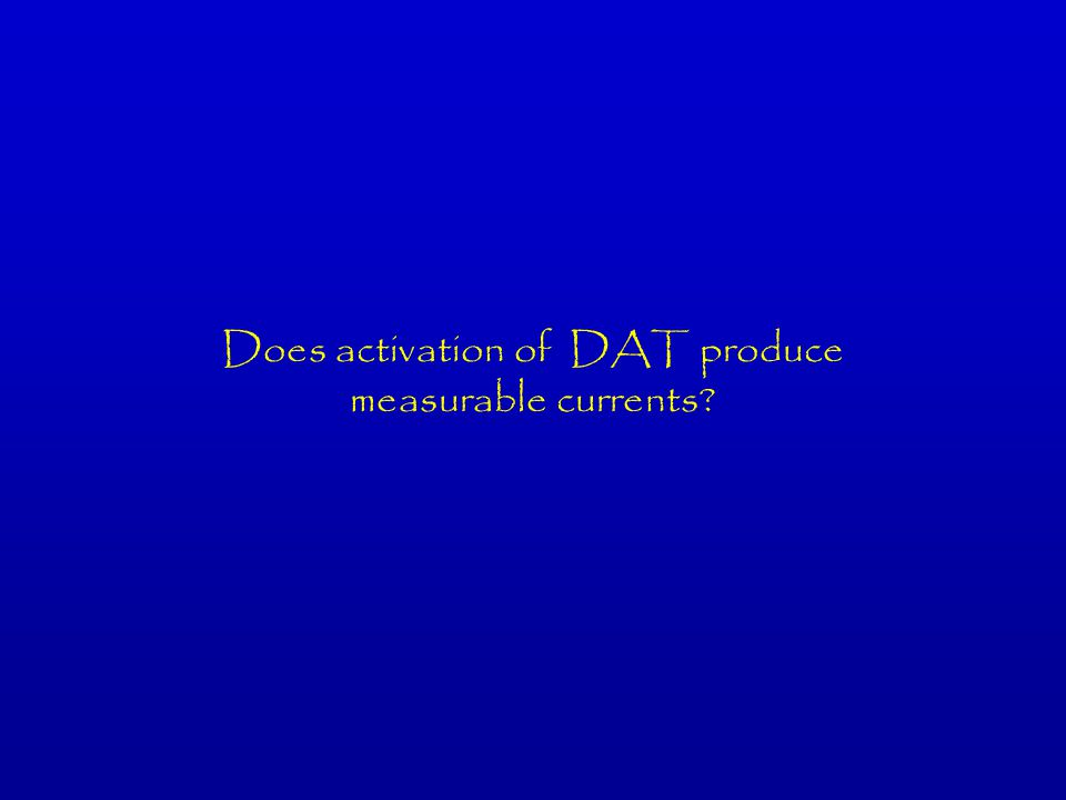 Does activation of DAT produce measurable currents