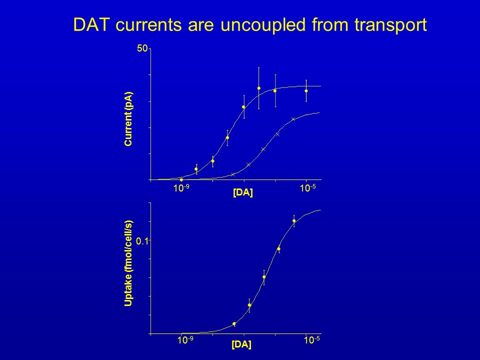 DAT currents are uncoupled from transport Current (pA) 50 10 -9 10 -5 [DA] Uptake (fmol/cell/s) 10 -9 10 -5 [DA] 0.1