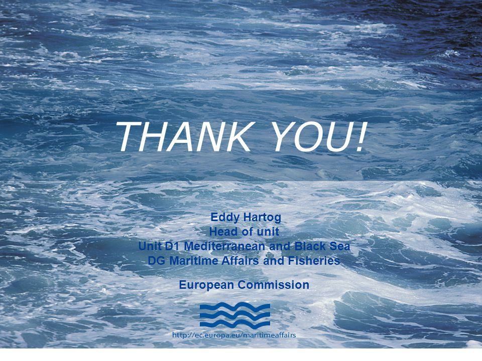 THANK YOU! Eddy Hartog Head of unit Unit D1 Mediterranean and Black Sea DG Maritime Affairs and Fisheries European Commission