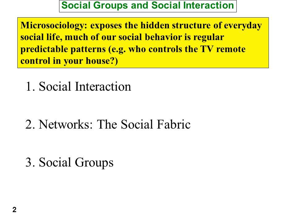 Social Groups and Social Interaction 1. Social Interaction 2.
