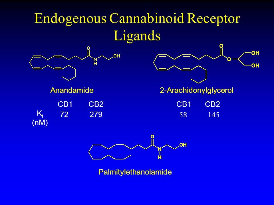 Endogenous Cannabinoid Receptor Ligands Anandamide2-Arachidonylglycerol Palmitylethanolamide CB2 72279 CB1CB2CB1 K i (nM) 58 145