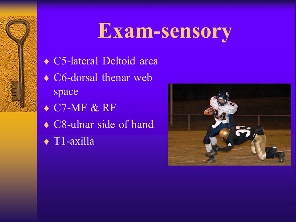 Exam-sensory  C5-lateral Deltoid area  C6-dorsal thenar web space  C7-MF & RF  C8-ulnar side of hand  T1-axilla