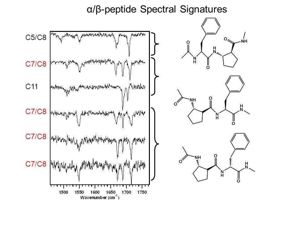 α/β-peptide Spectral Signatures C5/C8 C7/C8 C11 C7/C8