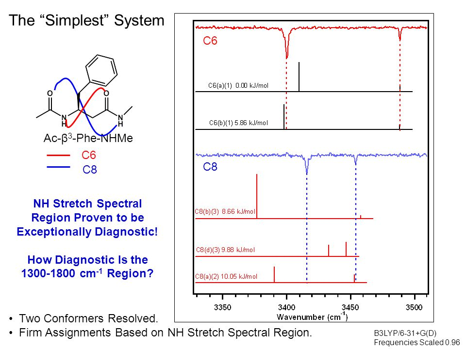 Ac-β 3 -Phe-NHMe C6 C8 The Simplest System Very Similar Signatures in C=O Stretch Region NH Bend Appears to be Slightly More Diagnostic NH bend shows increase in intensity for C6 ring, both experimentally and computationally.