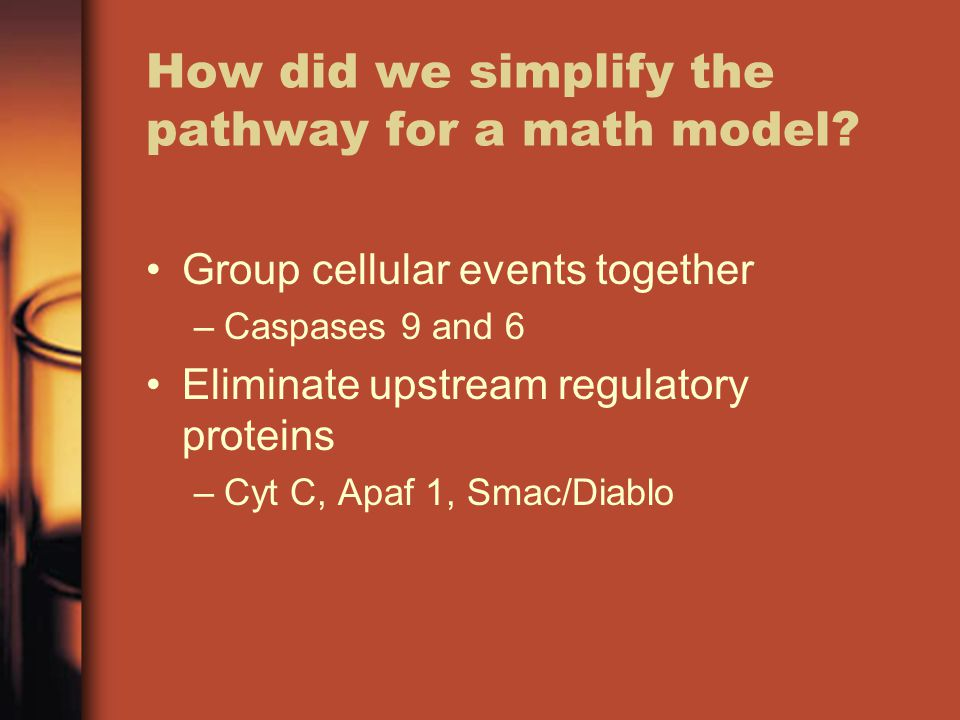 How did we simplify the pathway for a math model.