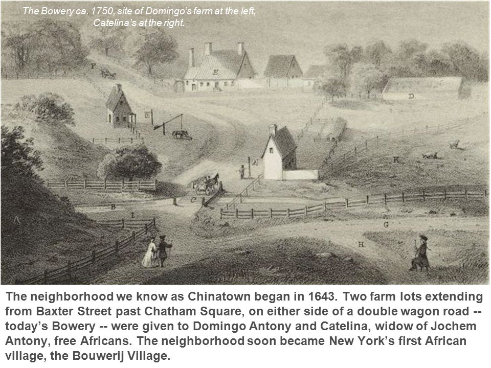 The neighborhood we know as Chinatown began in 1643. Two farm lots extending from Baxter Street past Chatham Square, on either side of a double wagon