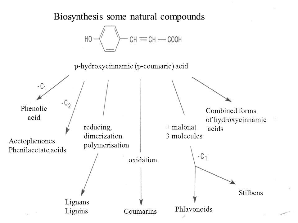 reducing, dimerization polymerisation Lignans Lignins Coumarins oxidation + malonat 3 molecules Phlavonoids Stilbens p-hydroxycinnamic (p-coumaric) acid Phenolic acid Acetophenones Phenilacetate acids Combined forms of hydroxycinnamic acids Biosynthesis some natural compounds