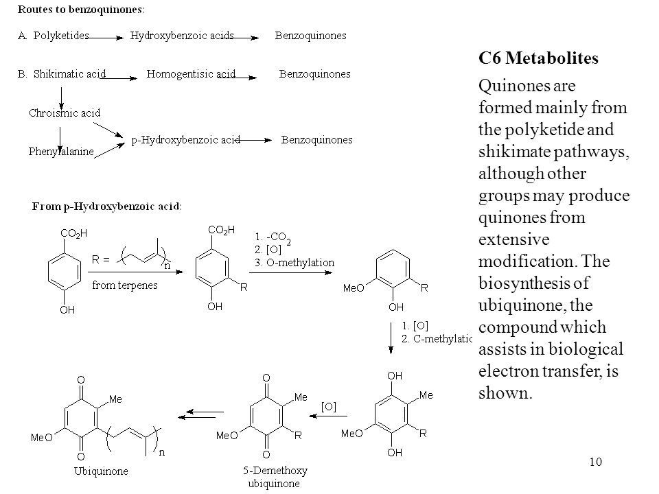 10 C6 Metabolites Quinones are formed mainly from the polyketide and shikimate pathways, although other groups may produce quinones from extensive mod