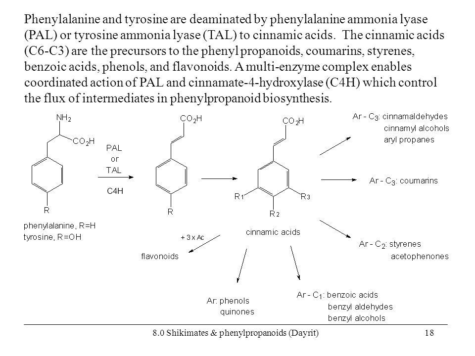 8.0 Shikimates & phenylpropanoids (Dayrit)18 Phenylalanine and tyrosine are deaminated by phenylalanine ammonia lyase (PAL) or tyrosine ammonia lyase