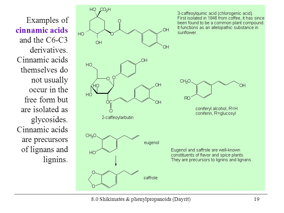 8.0 Shikimates & phenylpropanoids (Dayrit)19 Examples of cinnamic acids and the C6-C3 derivatives. Cinnamic acids themselves do not usually occur in t