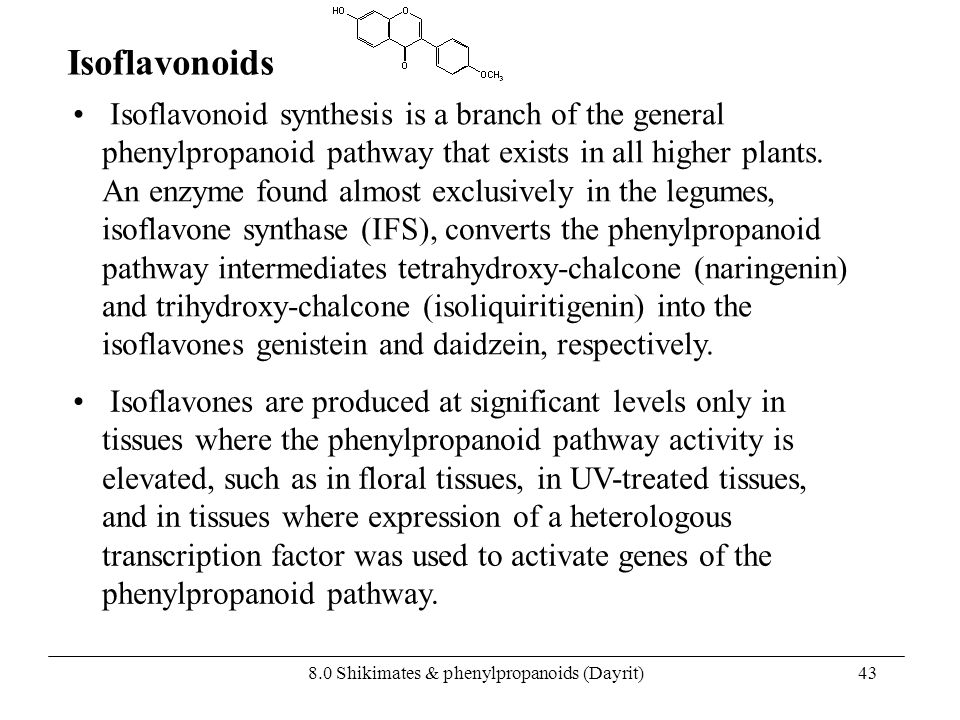 8.0 Shikimates & phenylpropanoids (Dayrit)43 Isoflavonoid synthesis is a branch of the general phenylpropanoid pathway that exists in all higher plant