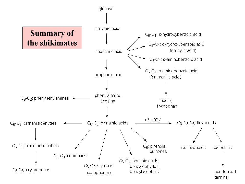 Summary of the shikimates