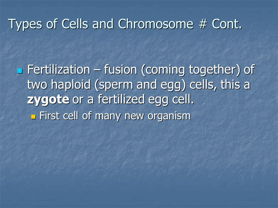 Types of Cells and Chromosome # Cont.