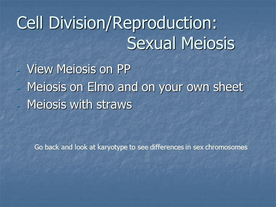 - View Meiosis on PP - Meiosis on Elmo and on your own sheet - Meiosis with straws Cell Division/Reproduction: Sexual Meiosis Go back and look at karyotype to see differences in sex chromosomes
