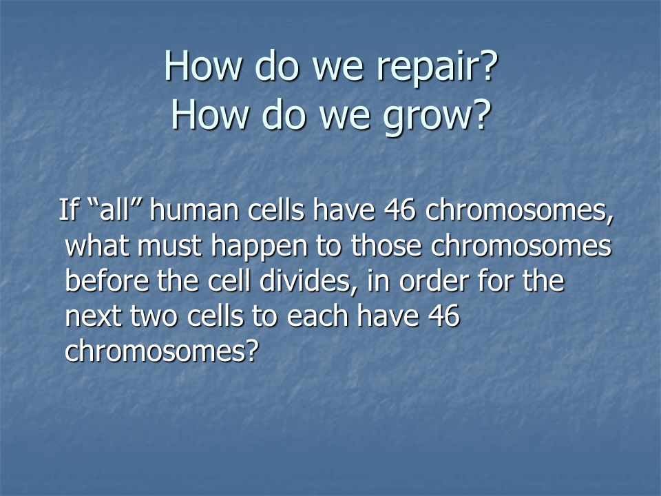 How do we repair. How do we grow.