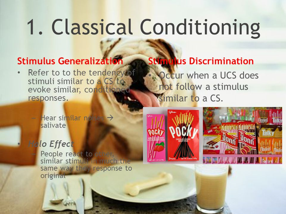 1. Classical Conditioning Stimulus Generalization Refer to to the tendency of stimuli similar to a CS to evoke similar, conditioned responses. – Hear